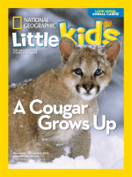 National Geographic Little Kids – 01 November 2017