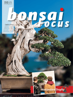 Bonsai Focus (English Edition) - May June 2018