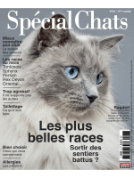 Special Chats N°43 – Fevrier-Avril 2019-2